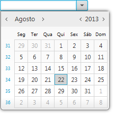 datePicker screenshot